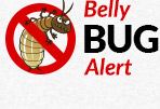 Belly Bug Alert